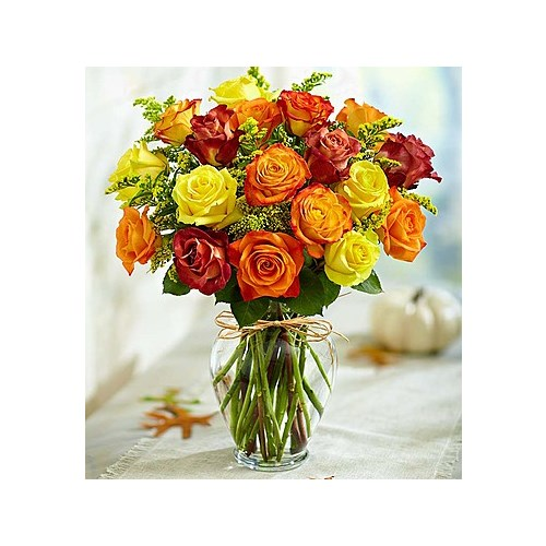 Fall-Roses-are-yellow-red-orange-in-a-vase