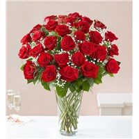 Three-Dozen-Red-Roses-Flowerama