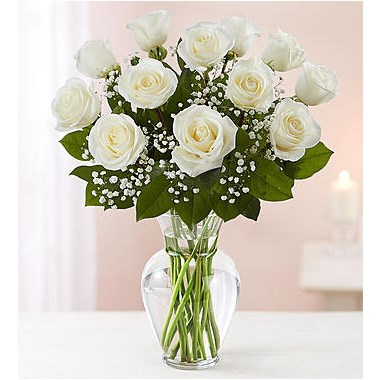 Rose Elegance Premium Long Stem White Roses In A 1 800 Flowers